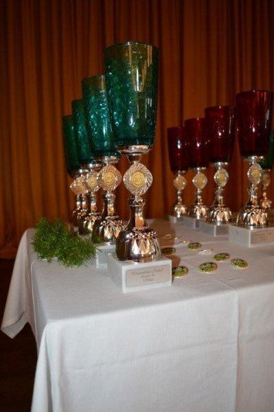 TS-Pokal